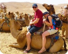 Bedouin hospitality - camel rides