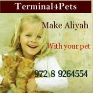 aliyahmagazinepets banner2